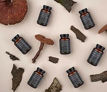 medicinal-mushroom-products