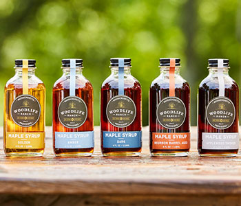 maple-syrup-collection